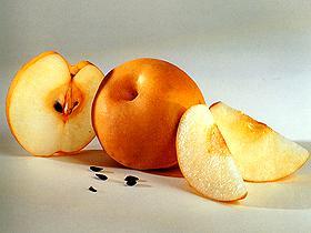 تعرف الفواكه الاندونيسيه nashi01.jpg